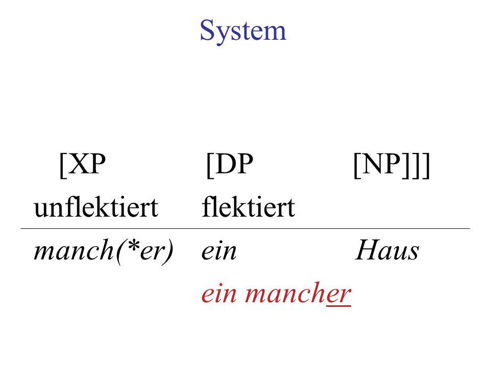 System [XP [DP [NP]]] unflektiert flektiert manch(*er) ein Haus ein mancher
